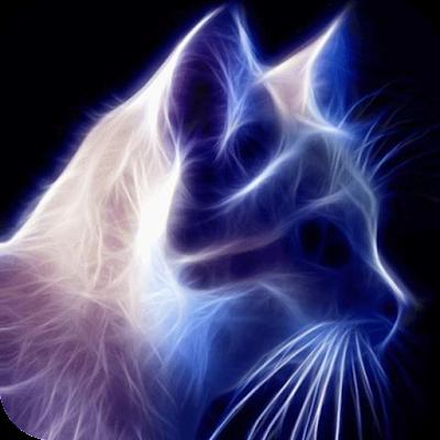 Sparkling cat Live Wallpaper