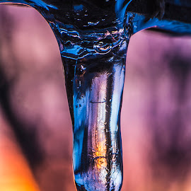 Melting icicle at sunset by Kevin Adams - Nature Up Close Water