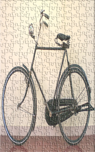 Puzzle Bicycle Java