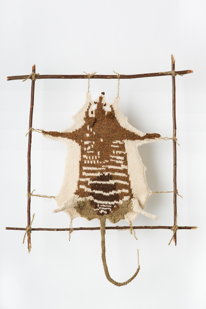 "Photo: NUMBAT #2 2013 19.5"" X 7"" (49.5CM X 17.7CM) YARN, STRING, STICKS INTERPRETATION FROM SPECIMEN AT MELBOURNE MUSEUM: SEX-?   COLLECTED - BORDER OF VICTORIA & S.AUSTRALIA, J.G.HUBBE, DONOR, W.B.SPENCER. (C) Ruth Marshall,2013."