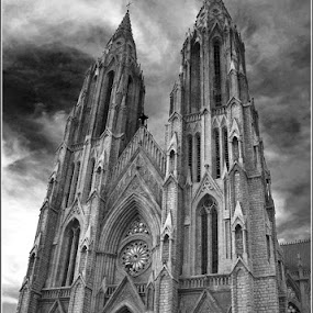 St. Philomena's Church, Mysore by Manabendra Ghosh - Buildings & Architecture Places of Worship