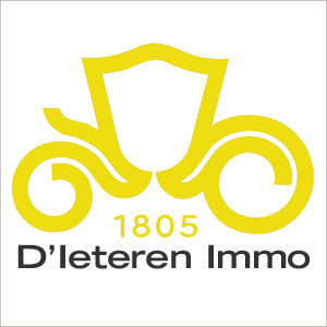 Image result for d'ieteren immo