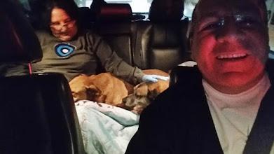 Photo: Neste último final de semana levamos cobertores e agasalhos para os nosso cães que estão em Embu-Guaçu. Em virtude do frio nas proximidades da serra, retiramos de lá dois idosos que agora vão morar conosco. A cadela tem platina na perna: há anos ela foi operada pois a Wandercy Gomes Jantália a encontrou atropelada e levou ao veterinário. Ela sente a cirurgia muito no inverno.