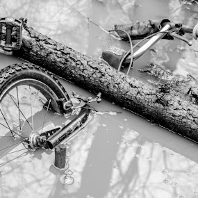 Submerged bicycle by Doug Faraday-Reeves - Black & White Objects & Still Life ( bicycle, mud, flood, bike )