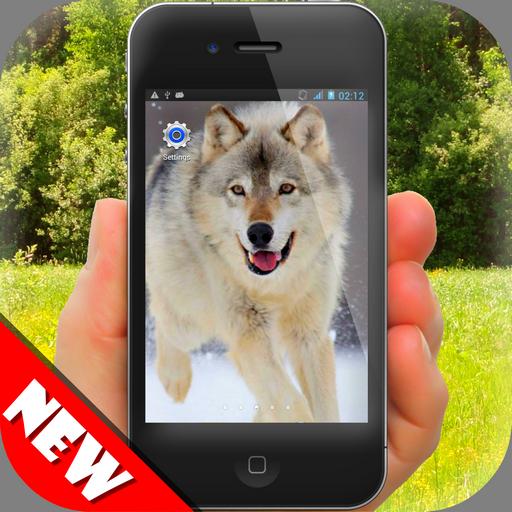 ウルフの壁紙 個人化 App LOGO-APP開箱王