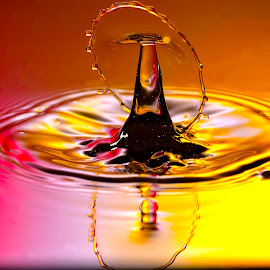 Droplet Drama by Nirmal Kumar - Abstract Water Drops & Splashes
