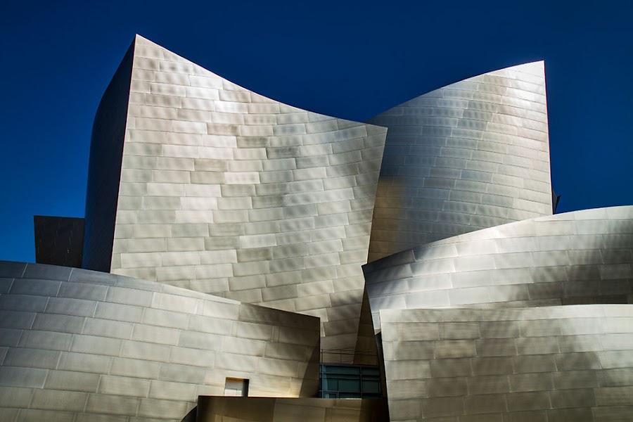 Walt Disney Concert Hall by Johannes Bichmann - Landscapes Travel
