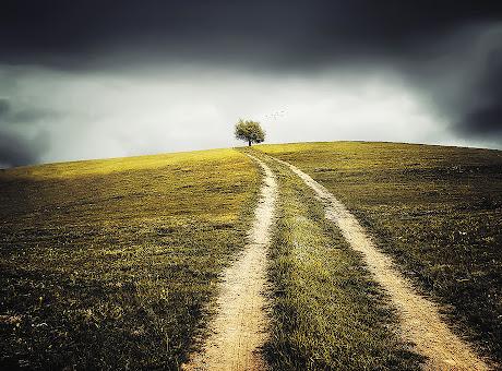 Landschaft Baum Design