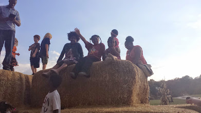 Photo: on top of the hay mountain