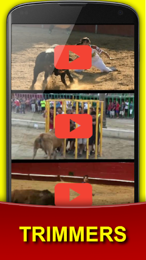 TRIMMERS FUNNY VIDEOS OF BULLS