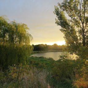 Sunrise at Standing Bear Lake by Chris Clay - Nature Up Close Water ( sunrise )