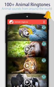 Animals: Ringtones screenshot 0