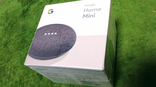 google home mini with google-home-notifier on Raspberry Pi