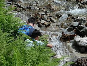 Photo: A Csendes-völgy a völgyben uralkodó csendről kapta a nevét, ugyanis a völgyben folyó Csendes-pataknak nagyon enyhe a lejtése, ezért ez a völgy szinte teljesen zajtalan. Fotó: NÁ