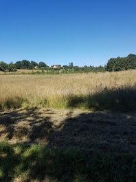 terrain à Liorac-sur-Louyre (24)