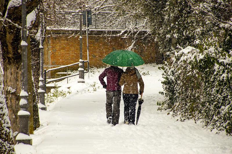 Neve romantica di stefano_angeli