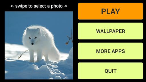 冬の動物LWP+パズル