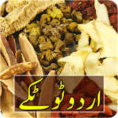 Urdu Totkay