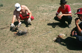Photo: 03247 ブルド/バスハダール家/タルバガン(野獣)料理/肉を毛皮につめて焼く