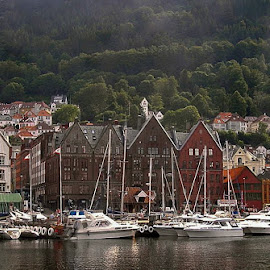 Bryggen by Katarina Himes - Novices Only Landscapes