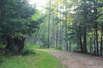 Photo: Roadway at Lowell Lake State Park by Lene Gary