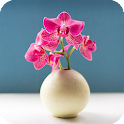 Orchid Pack 2 Live Wallpaper icon