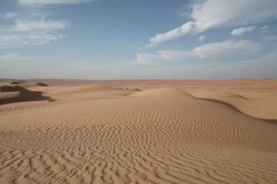 In der Wüste Wahiba