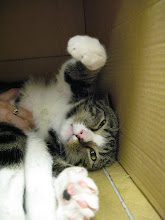 Photo: Come on, give me a hug!