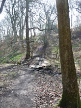 Photo: Steps up to the path across the golf course In Northcliffe Wood Shipley