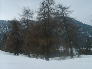Photo: Appena partiti dal paese di S. Martino