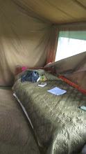 Photo: Bed, somewhat leveled. Note the uphill walk to the shower and commode rooms in the back of the tent.