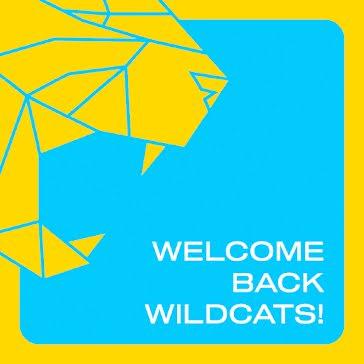 Welcome Back Wildcats - Instagram Post template