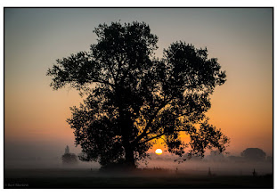 Photo: Natuur Zonsopkomst in de ochtendmist. Foto: Bert Morsink