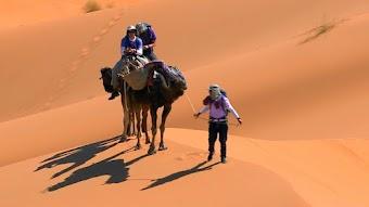 Sun! Sand! Sahara!