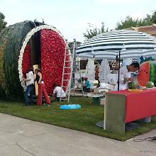 Photo: Арбузная площадка готовится ко встрече гостей!