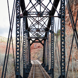 Verde Canyon Train Tracks by Dave Lipchen - Transportation Railway Tracks ( train tracks )