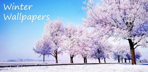 Winter Wallpapers APK 0