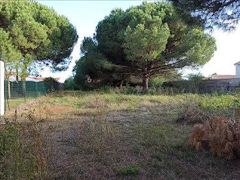 terrain à Rivedoux-Plage (17)