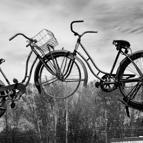 The  Gateway  by Rita Uriel - Artistic Objects Other Objects ( sculpture, bicycles, gateway, tree, forest, transportation, junk yard,  )