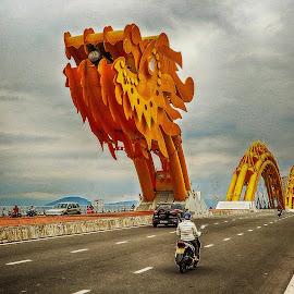 Dragon Bridge by Richard Michael Lingo - Buildings & Architecture Bridges & Suspended Structures ( da nang, dragon bridge, vietnam, architecture, bridges )