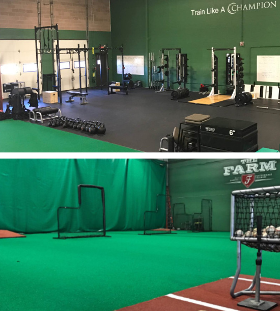 champion physical therapy and performance the farm baseball