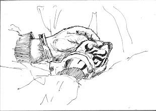Photo: 上銬的手(二)2011.04.19鋼筆 第二位收容人很年輕,手上刺了圖騰,但這美好的青春歲月卻因他的所做所為付之一炬…