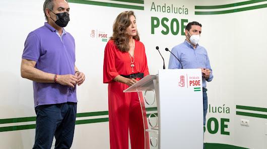 El PSOE pide que no se demore la investigación del caso mascarillas