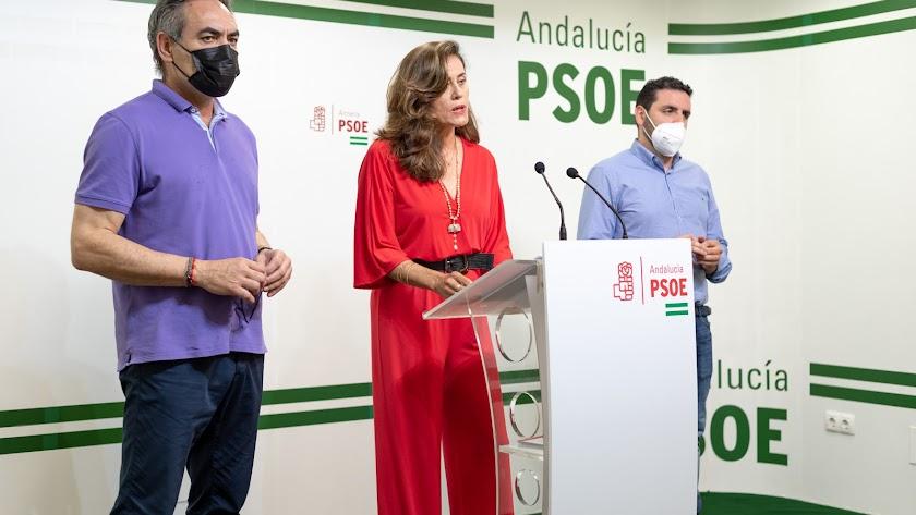 Marcelo López, Carmen Aguilar y Juan Manuel Ruiz.