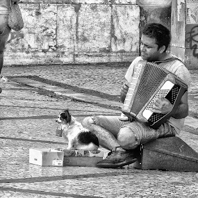 Player and his dog by Ana Paula Filipe - City,  Street & Park  Street Scenes ( music, city, dog, player, scene )