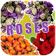Roses Flowers Stickers For Whatsapp(WAStickerApps) Download for PC Windows 10/8/7