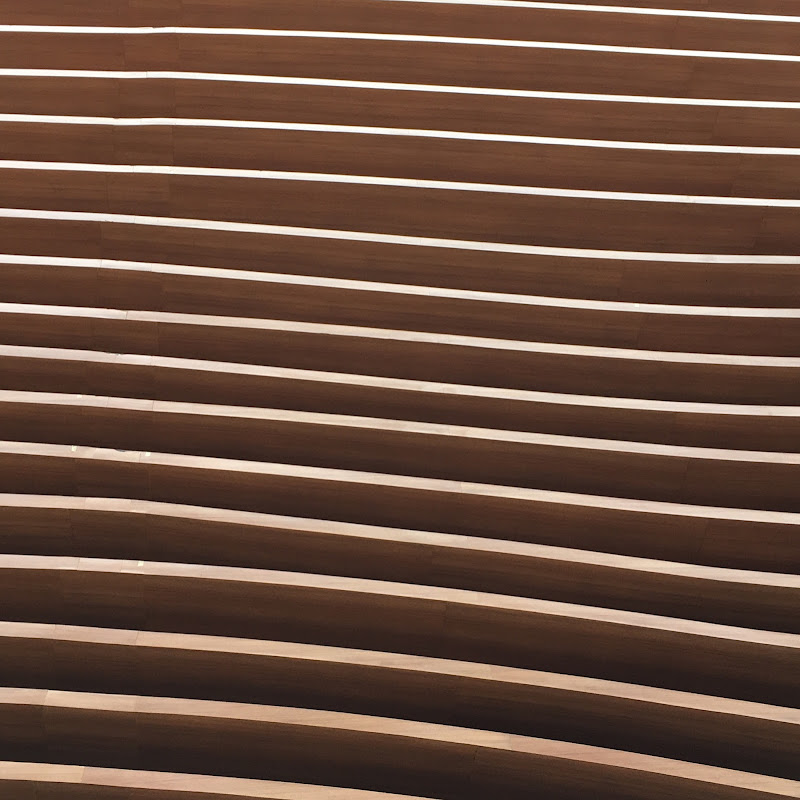 Curve legnose di alessioconti57