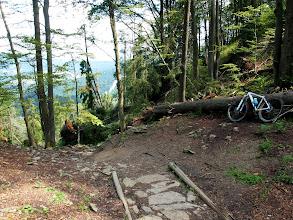 Photo: Z Wysokiej kieruję się szlakiem niebieskim/zielonym do Wąwozu Homole. Początek wymaga zejścia...
