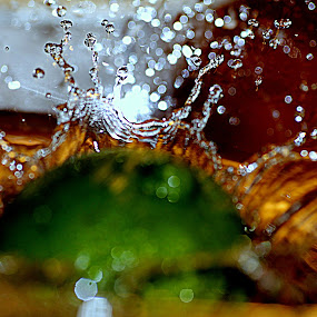 by Anahli Vava - Novices Only Macro ( try out waterdrop )