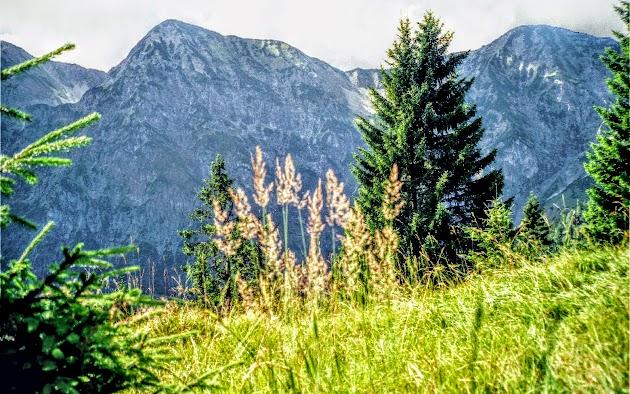 Dürrnbergjoch